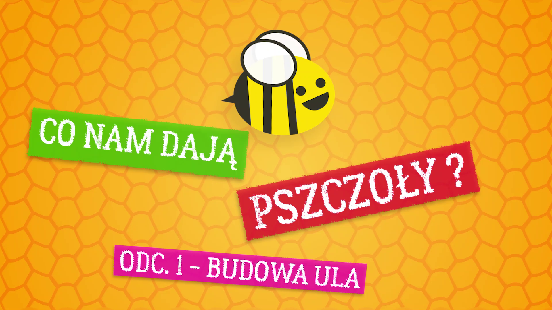 Co nam dają pszczoły ? Odc. 1 – budowa ula
